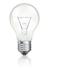 SW – light bulb